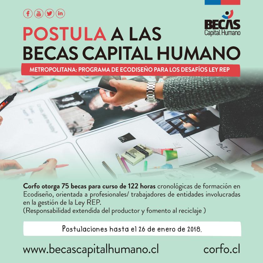 Becas Capital Humano: Corfo promueve innovación en el diseño de productos y servicios con foco en el medio ambiente y el reciclaje